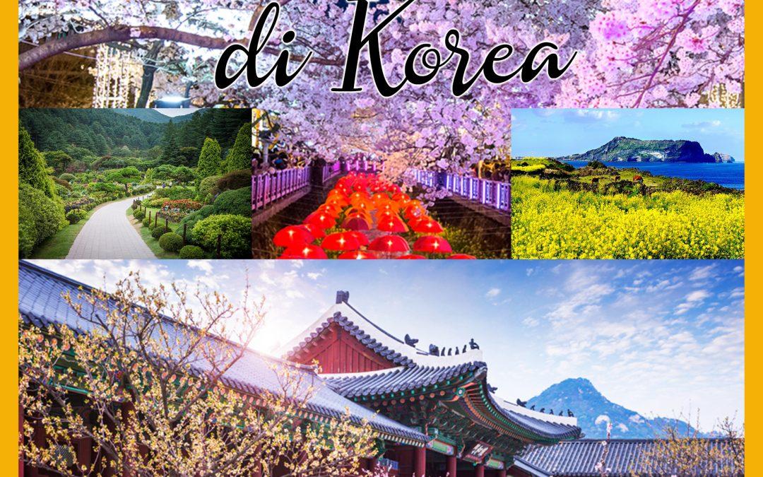 9 Tempat Wisata Populer di Korea